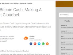 CloudBet Deposit Methods